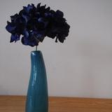 Henry Dean 花瓶